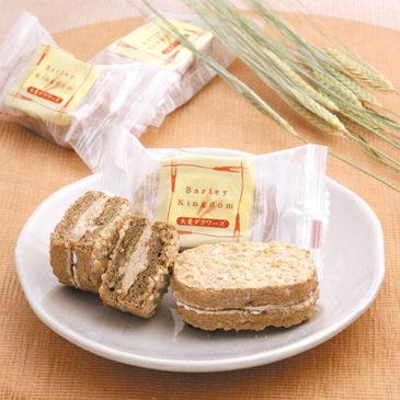 Japanese Western-Style Sweet of Tochigi