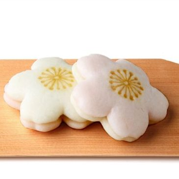 Spring Wagashi,  Japanese Sweets of Sakura